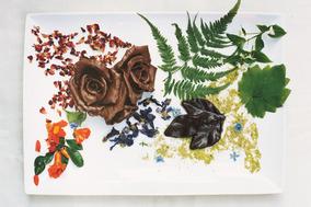ローフード 媚薬のショコラ 〜 ローチョコレート作りの応用