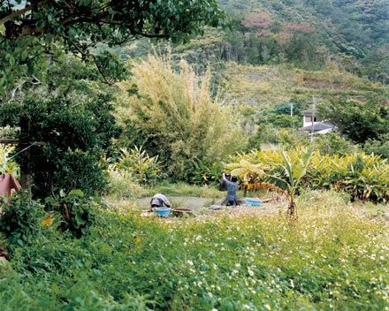 kanaikogei_4.jpg