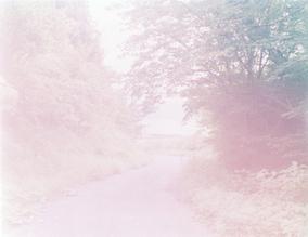 写真家、川内倫子の作品展『Someday for sure』が開催中<br>5月20日(金)から作品展『The rain of blessing』がスタート