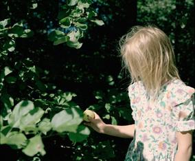 ロシアの美しい自然とともに綴られるストーリーエレナ・トゥタッチコワ初めての写真集が刊行