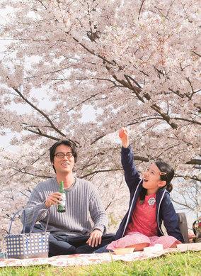 優しさに満ちたトランスジェンダーの女性を、生田斗真が好演。監督・荻上直子の挑戦作、映画『彼らが本気で編むときは、』