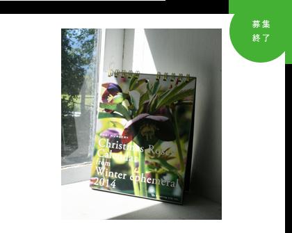 「大木ナーサリー」卓上カレンダー