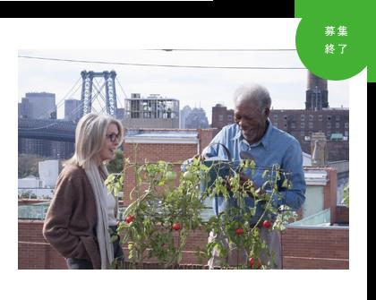 全米で愛され続けるロングセラー小説『ニューヨーク 眺めのいい部屋売ります』
