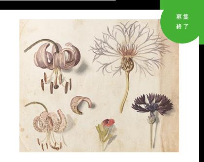 『世界遺産キュー王立植物園所蔵 イングリッシュ・ガーデン 英国に集う花々』ご招待券